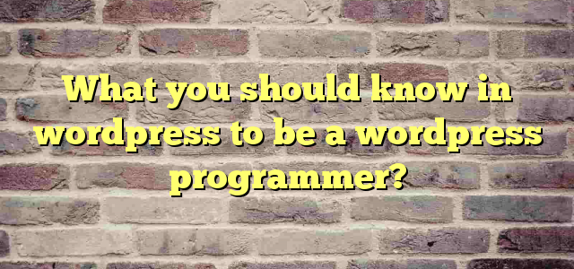 What you should know in wordpress to be a wordpress programmer?